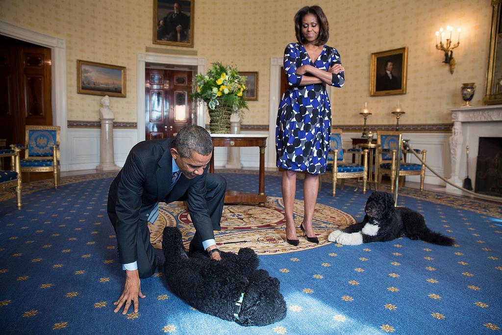 Παίζοντας με τα δύο αγαπημένα σκυλιά της οικογένειας Ομπάμα μέσα στο «Μπλε Δωμάτιο» του Λευκού Οίκου