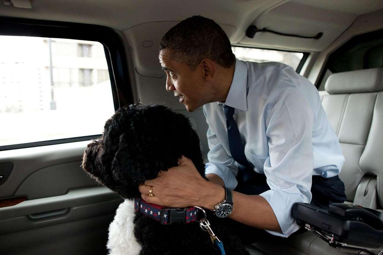 Ο Ομπάμα και ο σκύλος του Μπο αγναντεύουν έξω από το παράθυρο του προεδρικού αυτοκινήτου καθ'οδόν προς κατάστημα με αξεσουάρ κατοικιδίων