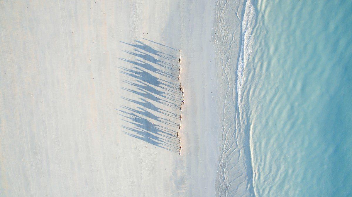 Δεύτερο Βραβείο, κατηγορία Ταξίδι. Βόλτα με καμήλες για τους νεόνυμφους στην παραλία Κέιμπλ στην Αυστραλία