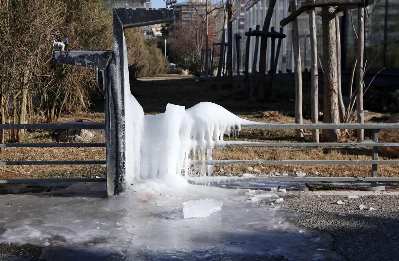 Οι δρόμοι στην Θεσσαλονίκη έπιασαν χιόνι και οι περαστικοί έπρεπε να προσέχουν σε κάθε τους βήμα