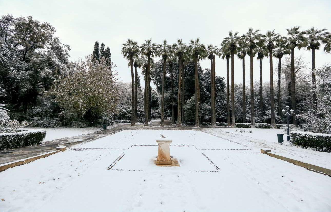 To ηλιακό ρολόι και τα φοινικόδεντρα στον Εθνικό Κήπο
