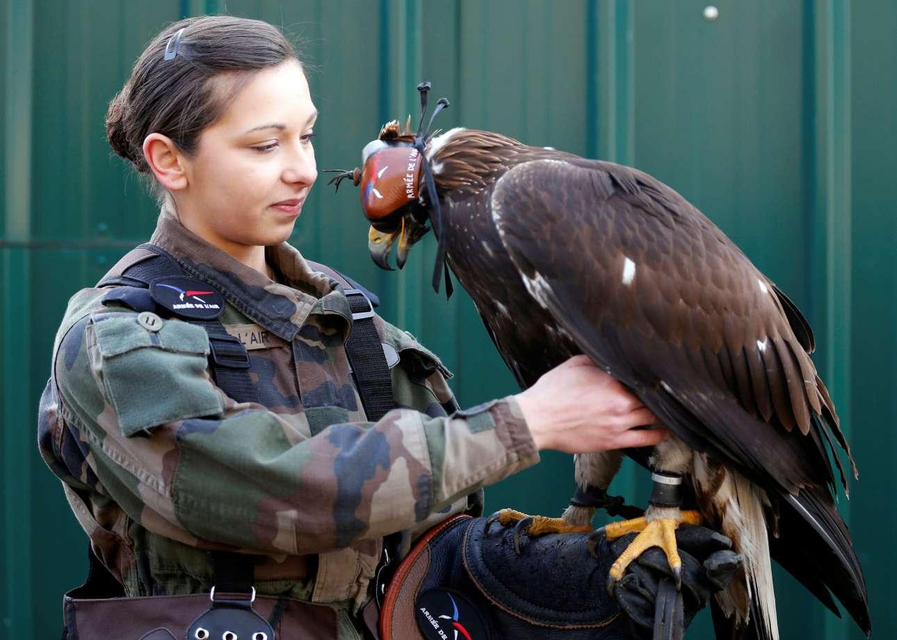 Μια νεαρή εκπαιδεύει αετούς στην αεροπορική βάση της νότιας Γαλλίας
