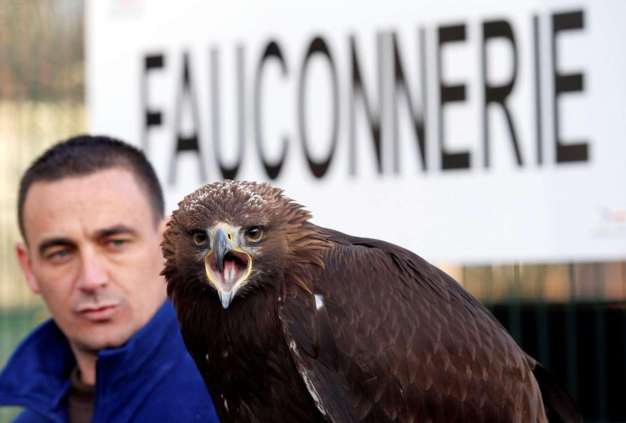 Ενας εκπαιδευτής αετών στέκεται πίσω από το πτηνό που κοιτάζει τον φακό