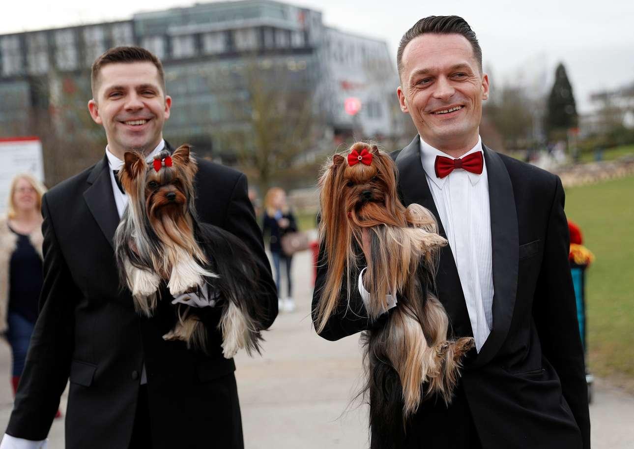 Ιδοκτήτες και σκυλιά με ασορτί κόκκινους φιόγκους και παπιγιόν