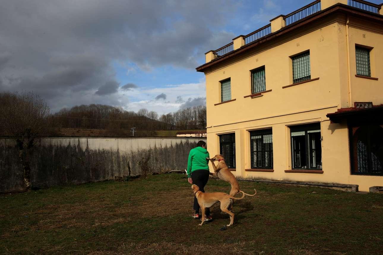 Τα σκυλιά θεραπείας προσαρμόζουν τη συμπεριφορά τους αναλόγως τις ανάγκες του ασθενή. Παίζουν με τους ασθενείς που είναι πιο δραστήριοι και κάθονται ήσυχα με εκείνους που έχουν κινητικά προβλήματα