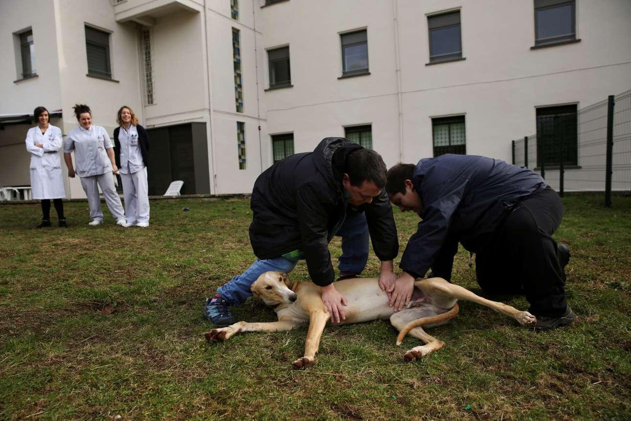 Ο 24χρονος Αντρες και ο 29χρονος Ινάκι χαϊδεύουν τον «Ατίλα» υπό το χαρούμενο βλέμμα των νοσοκόμων και θεραπευτριών. Σύμφωνα με μελέτες, οι σκύλοι δεν βοηθούν μόνο τους ασθενείς, αλλά και το προσωπικό των ιδρυμάτων, καθώς και τις οικογένειές τους