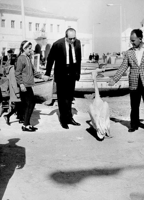 Αρχές δεκαετίας του 1960, στη Μύκονο, με την Ντόρα. Και τον περίφημο πελεκάνο του νησιού