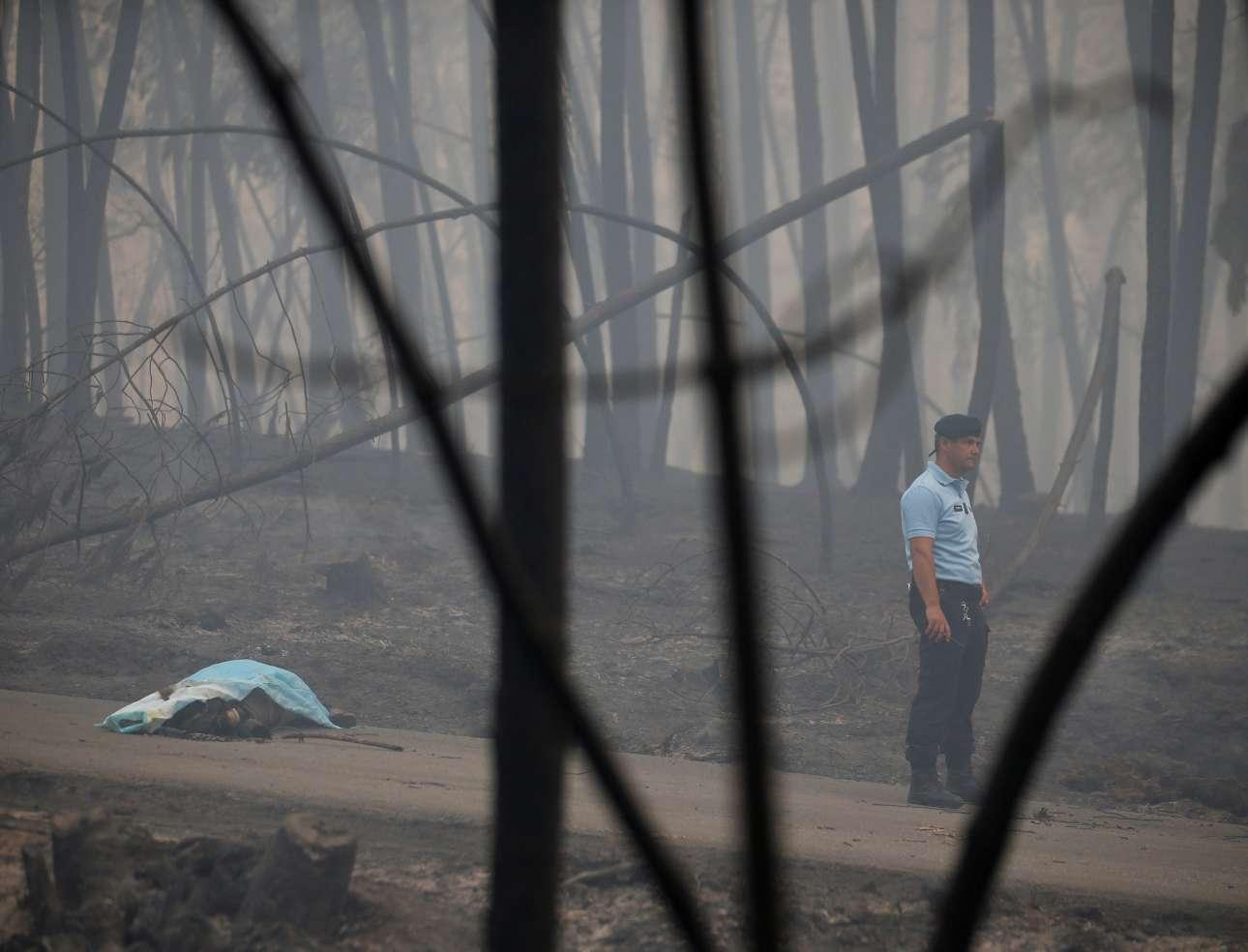Ενα από τα θύματα της πυρκαγιάς, κάτω από κουβέρτα, στο δάσος που βρίσκεται δίπλα σε αυτοκινητόδρομο, στο Πεντρογκάο Γκράντε. Η κυβέρνηση κήρυξε τρεις ημέρες εθνικού πένθους