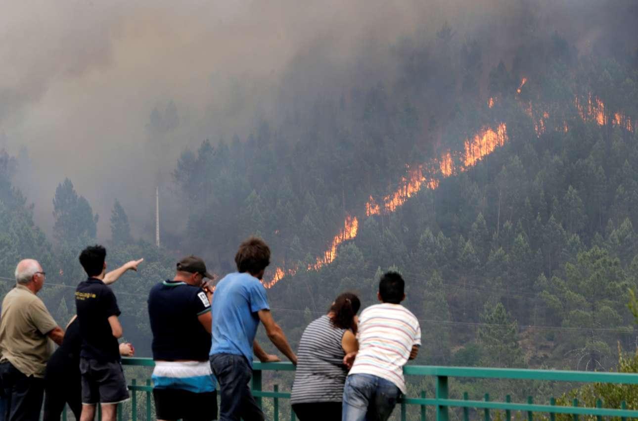 Εντρομοι παρακολουθούν τη «διαδρομή» της πυρκαγιάς σε πλαγιά γεμάτη έλατα, στο Πεντρογκάο Γκράντε