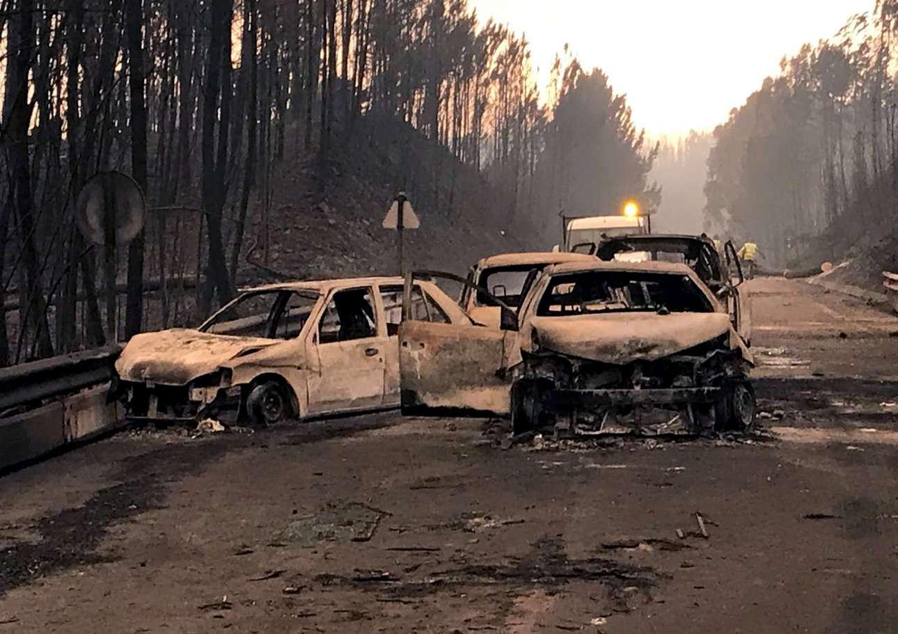 Καμένα αυτοκίνητα, σε δρόμο που διασχίζει δασική έκταση, στο Πεντρογκάο Γκράντε.