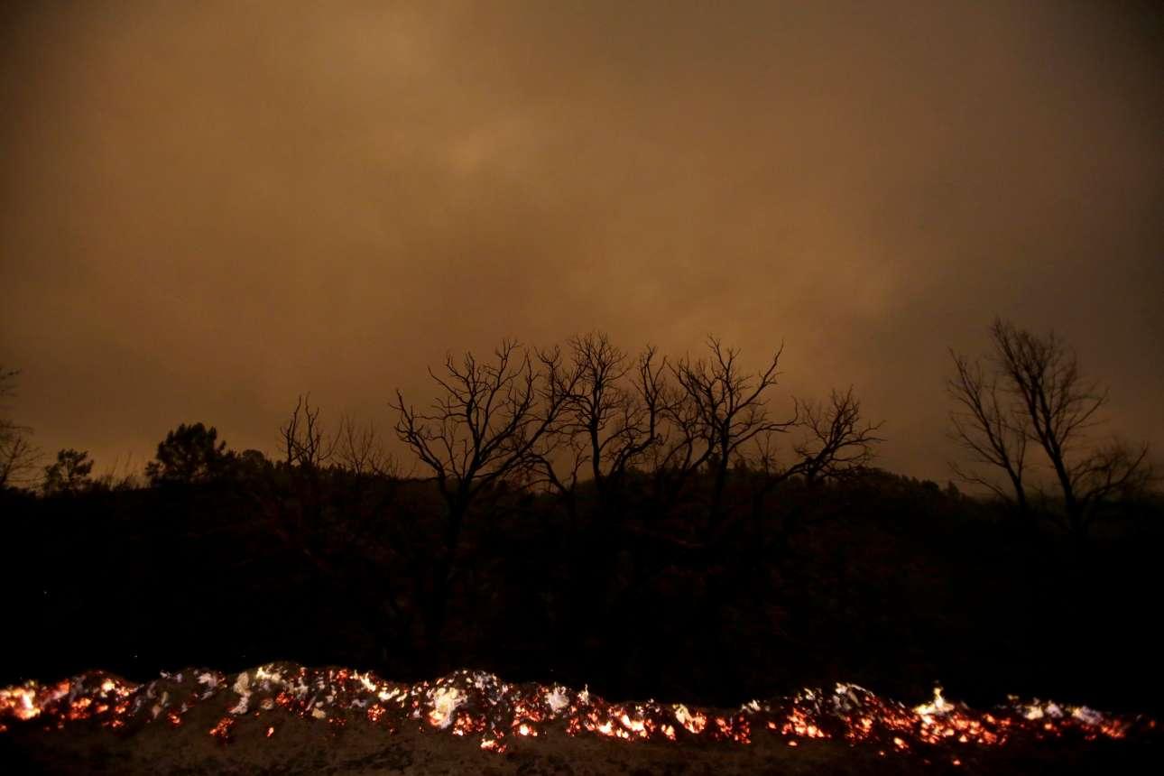 Καπνοί, φλόγες, καμένα δέντρα στο δάσος του Αλμπάρες