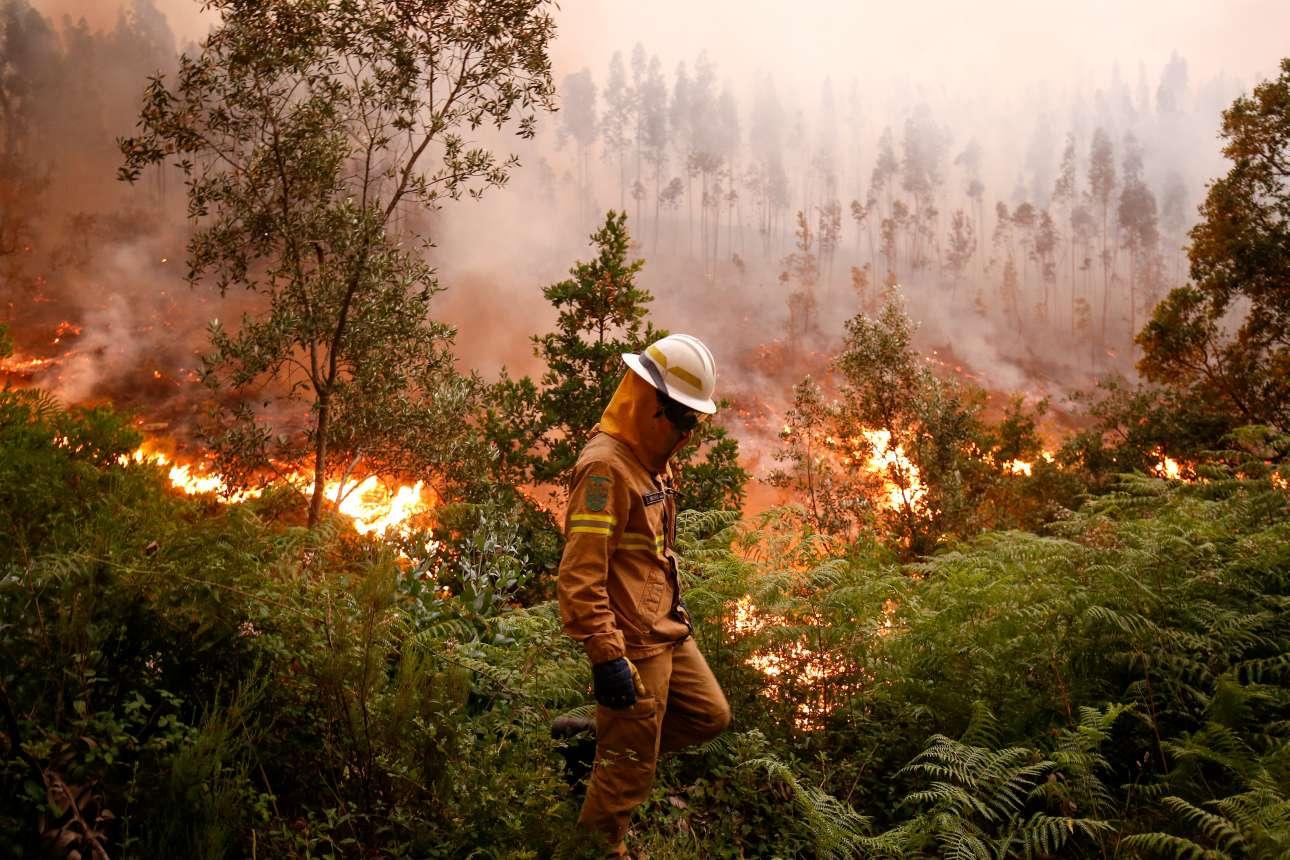 Πυροσβέστης κρυμμένος μέσα στη στολή, το κράνος και τη μάσκα, διασχίζει φλογισμένο δάσος κοντά στο χωριό Φάτο. Κάποια φυτά είναι ακόμη πράσινα...