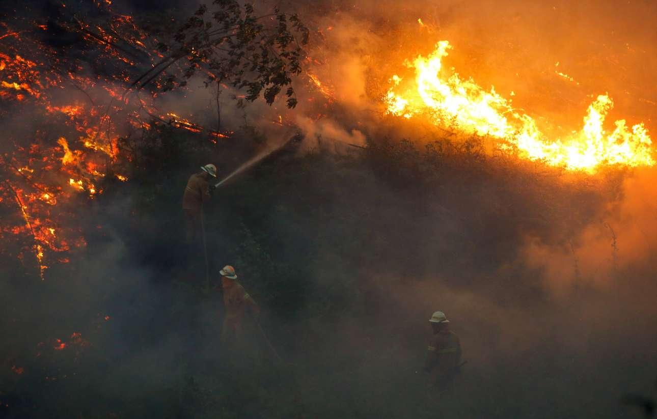 (Ανισος) αγώνας με τις φλόγες. Μέχρι τη Δευτέρα οι πυροσβέστες δεν είχαν καταφέρει να θέσουν υπό έλεγχο την πυρκαγιά που εκδηλώθηκε το Σάββατο...