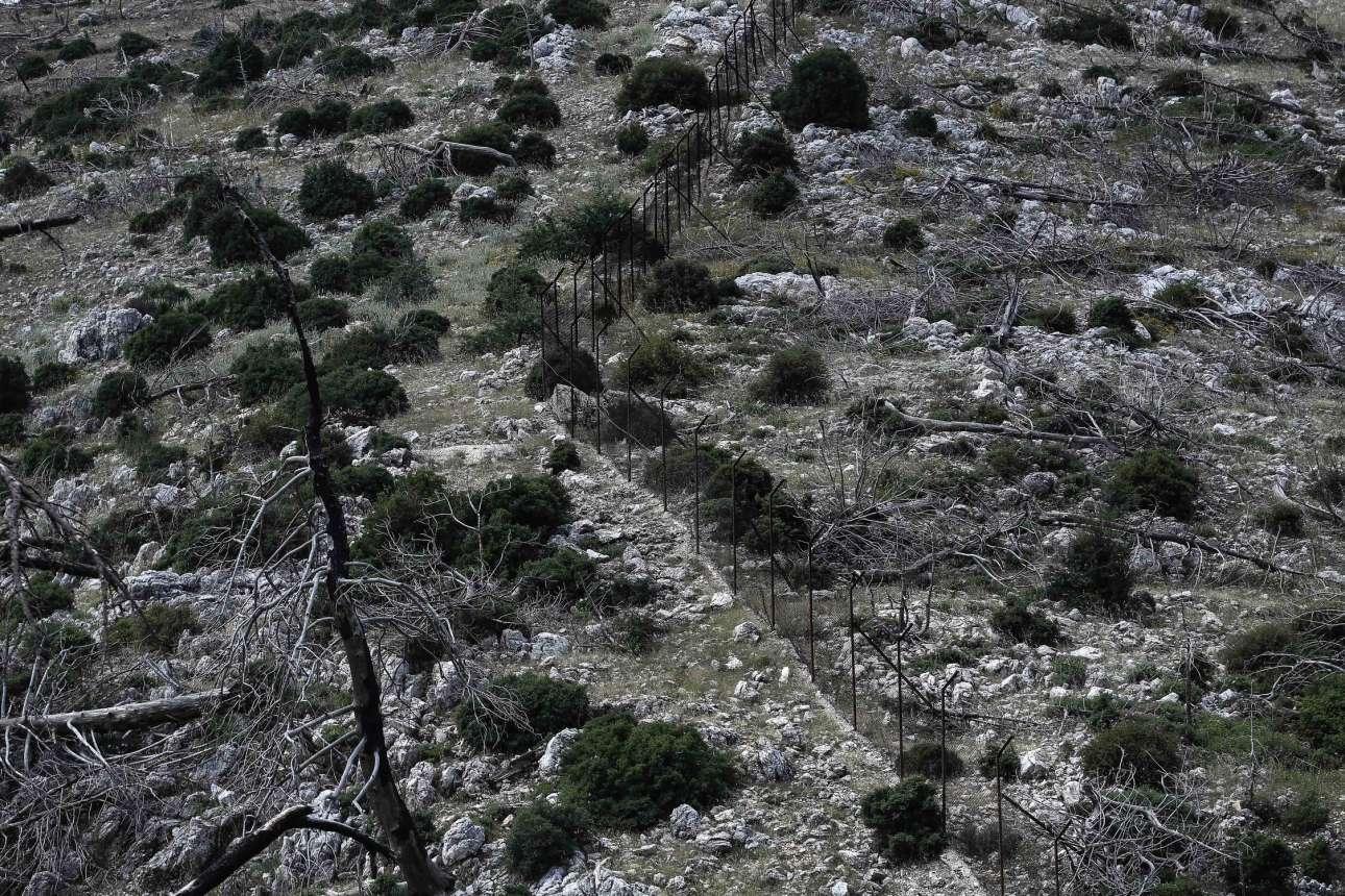 Δέκα χρόνια μετά, οι πληγές στο βουνό είναι ακόμα ανοιχτές