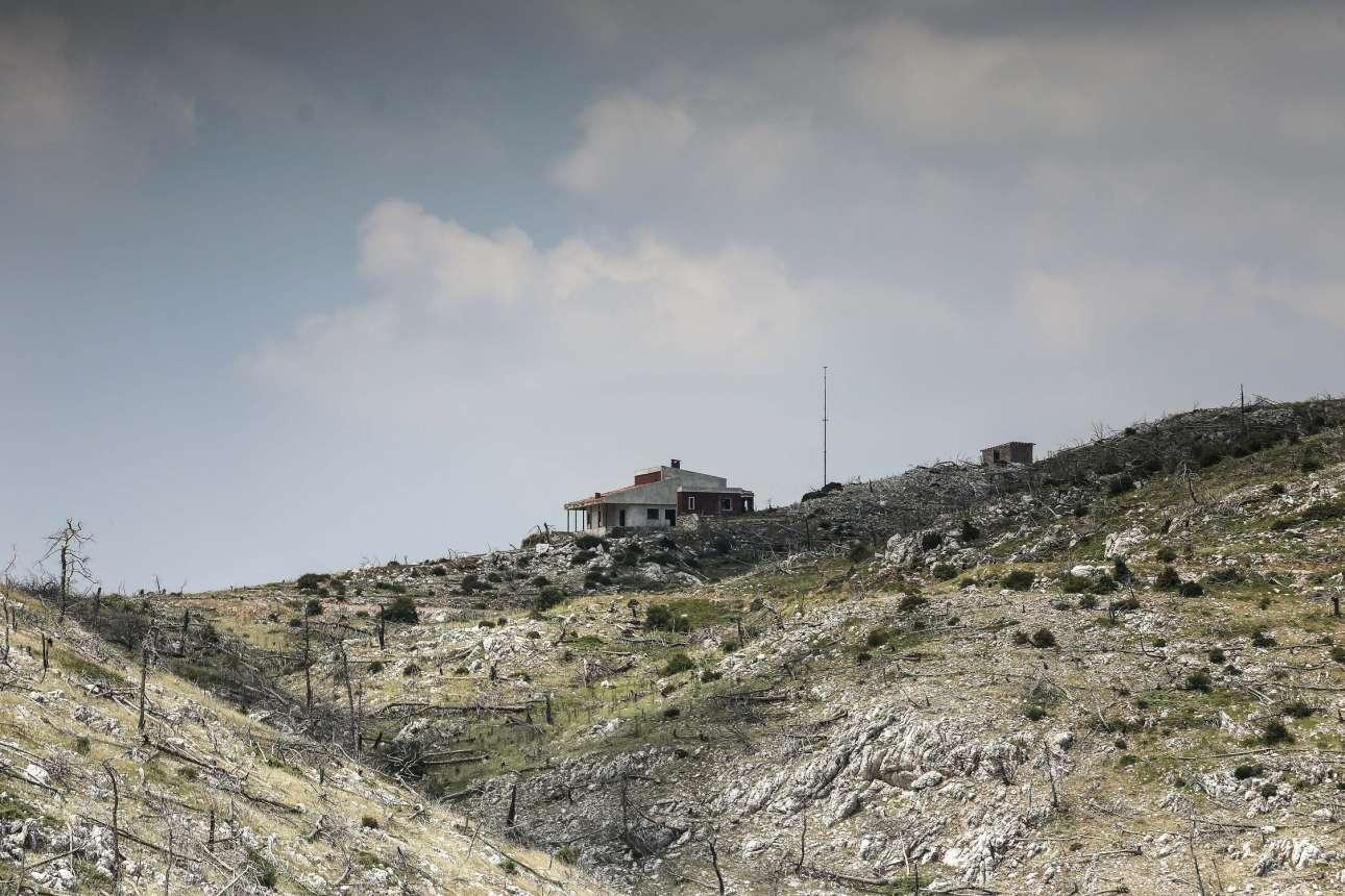 Ενα σπίτι -πώς να χτίστηκε άραγε- στέκει μόνο. Πριν από δέκα χρόνια ήταν περικυκλωμένο από πεύκα και έλατα