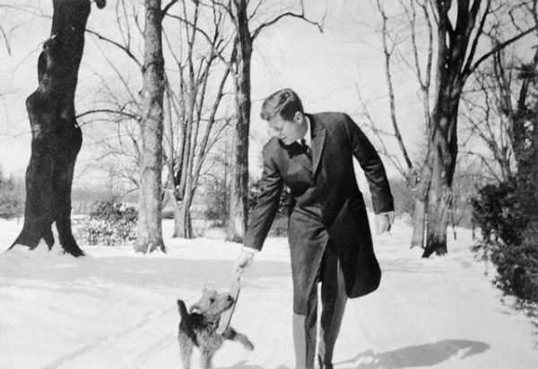 """Original caption: """"Charlie"""" and the Late President. Glen Ora, Virginia: This photo, made in March 1962 by Washington correspondent Fred Blumenthal, shows the late President John F. Kennedy indulging in a bit of play with the family's Welsh terrier, """"Charlie,"""" at the Presidential retreat here. March 1962 Glen Ora, Virginia, USA"""