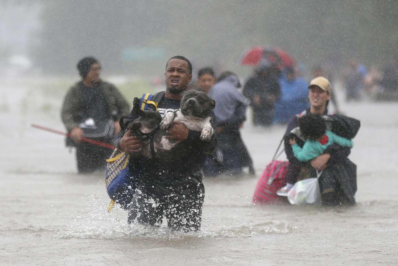 Η μάχη της επιβίωσης. Ανθρωποι περπατούν κουβαλώντας τα μωρά τους και τα κατοικίδιά τους στους πλημμυρισμένους δρόμους του Χιούστον