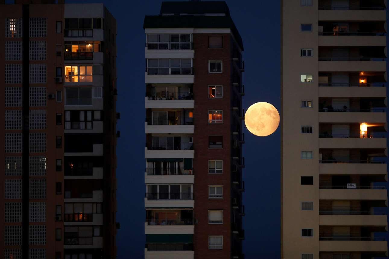 Τρίτη, 8 Αυγούστου. Ενα φωτεινό, ολόγιομο φεγγάρι υψώνεται πίσω από τις πολυκατοικίες στην Μάλαγα της Ισπανίας