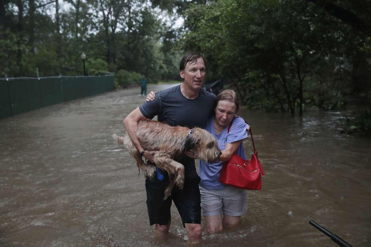 Οι μικροί ήρωες. Αυτός ο άνδρας μπήκε στο σπίτι της γειτόνισσάς του για την σώσει. Φεύγοντας, πήρε μαζί του και τον χαριτωμένο σκύλο της