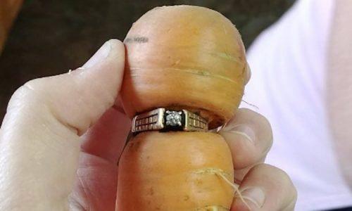 carrot-ring