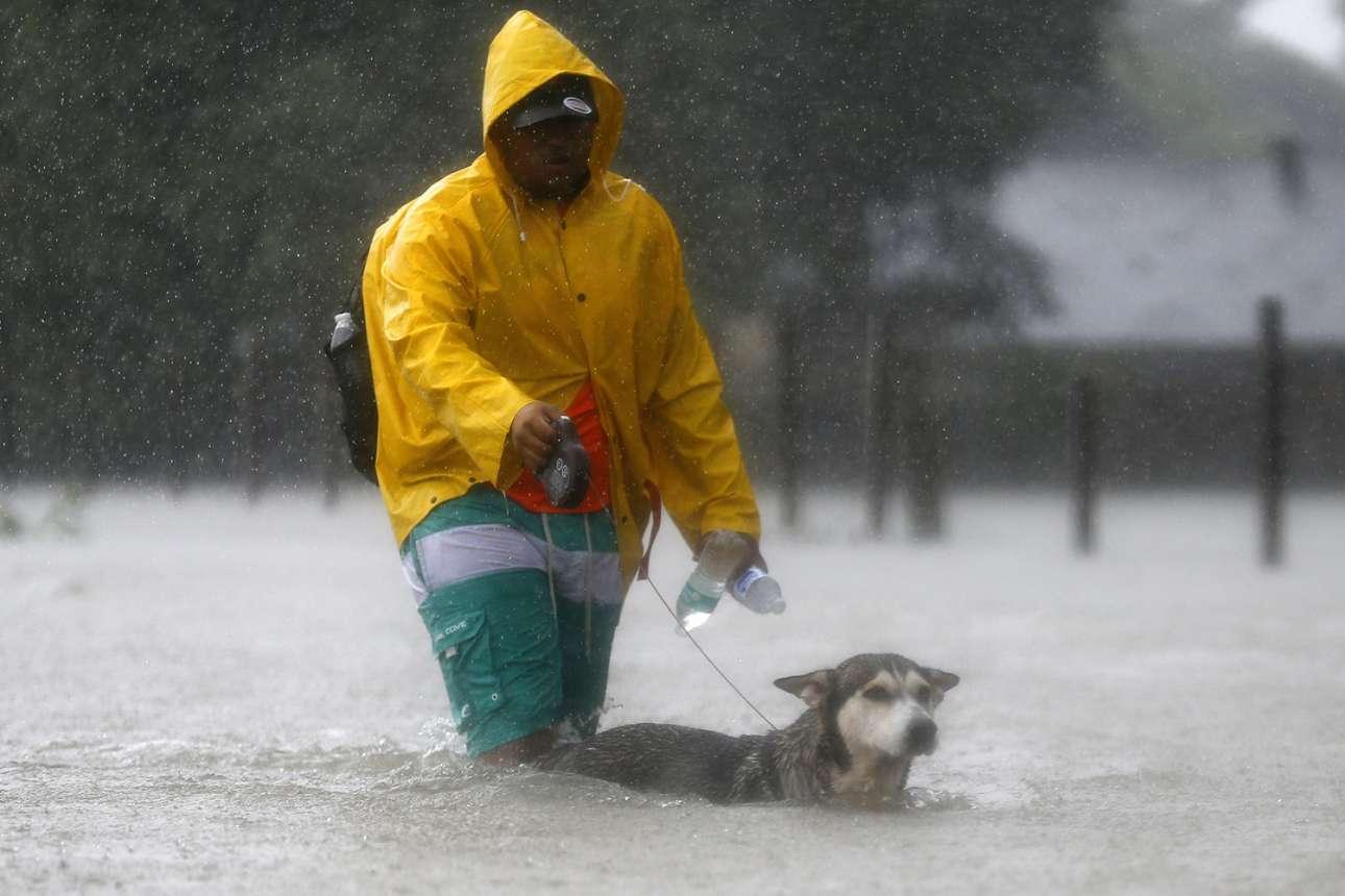 Ενας άνδρας περπατά μαζί με το σκυλί του στους δρόμους του Χιούστον. Το κατοικίδιο ουσιαστικά κολυμπά μιας και η στάθμη του νερού φτάνει στα γόνατα του ιδιοκτήτη του