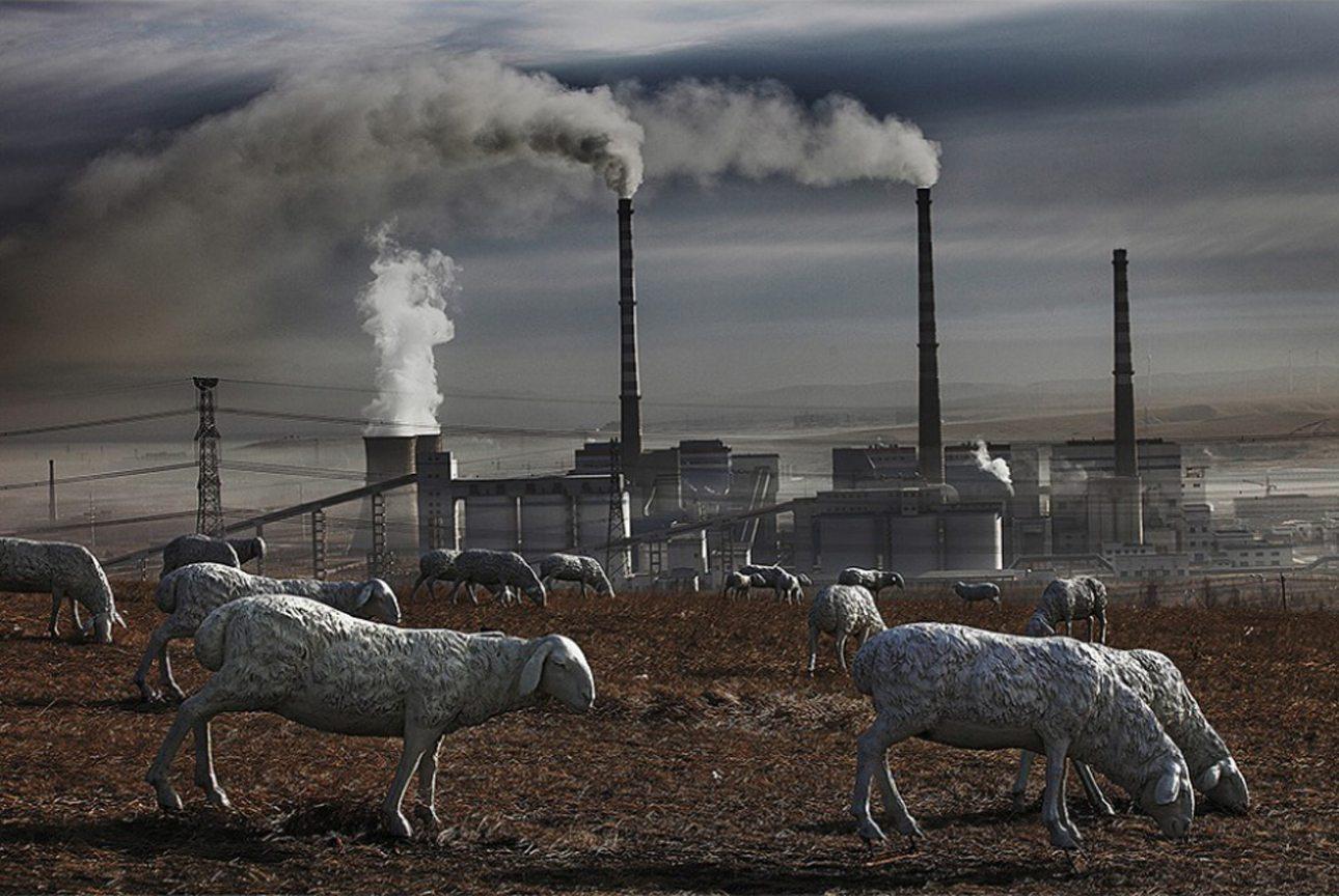 Το πρόβατα σε αυτό το λιβάδι στην εσωτερική Μογγολία στην Κίνα είναι ψεύτικα. Τα έβαλαν οι χωρικοί ως διαμαρτυρία επειδή τα εργοστάσια που φαίνονται πιο πίσω έχουν μολύνει σε τέτοιο βαθμό το χώμα ώστε απαγορεύεται η βοσκή