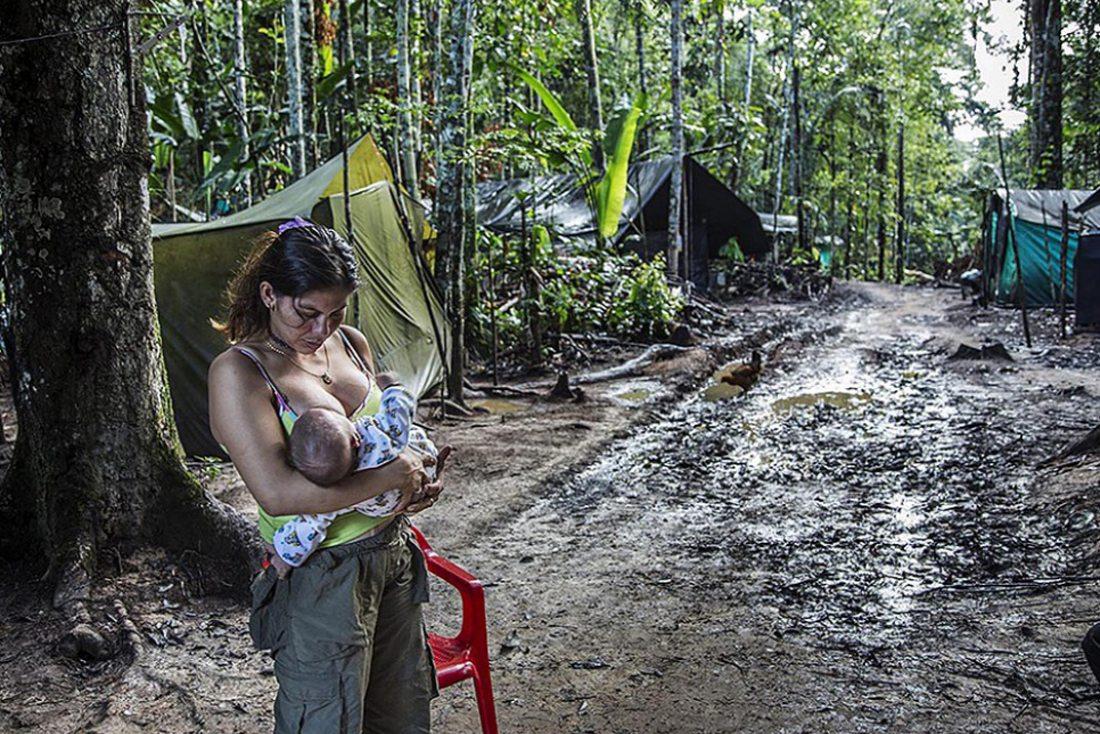 Μια τρυφερή στιγμή μέσα στη ζούγκλα της Κολομβίας για την αντάρτισσα του FARC που θηλάζει το μωρό της, λίγο καιρό πριν αυτή και οι σύντροφοί της παραδώσουν οριστικά τα όπλα