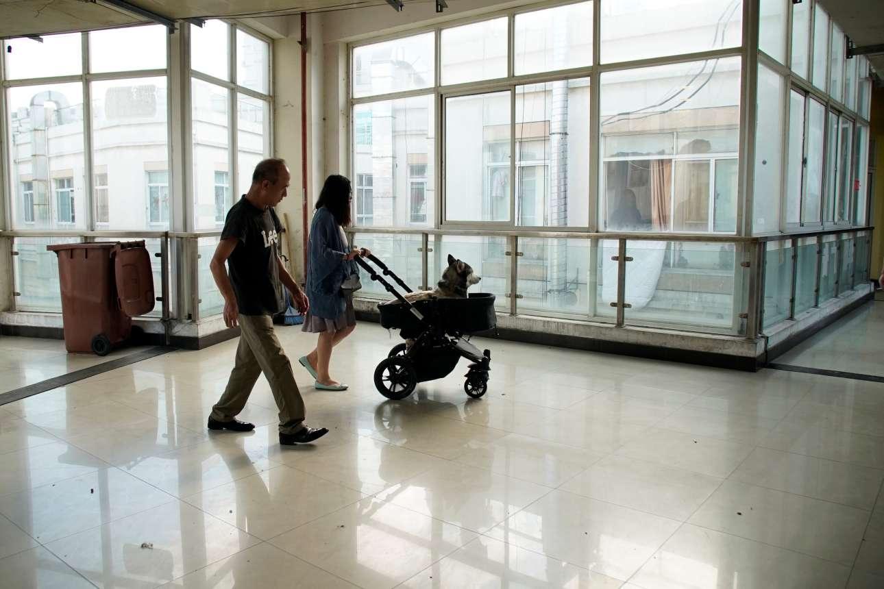 Μία γυναίκα μεταφέρει το σκύλο της σε καροτσάκι μετά τη συνεδρία στο Κέντρο Νευρολογίας και Βελονισμού για Ζώα στη Σαγκάη