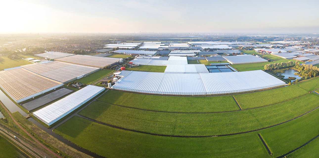 Aerial view of greenhouse-Netherlands_1290