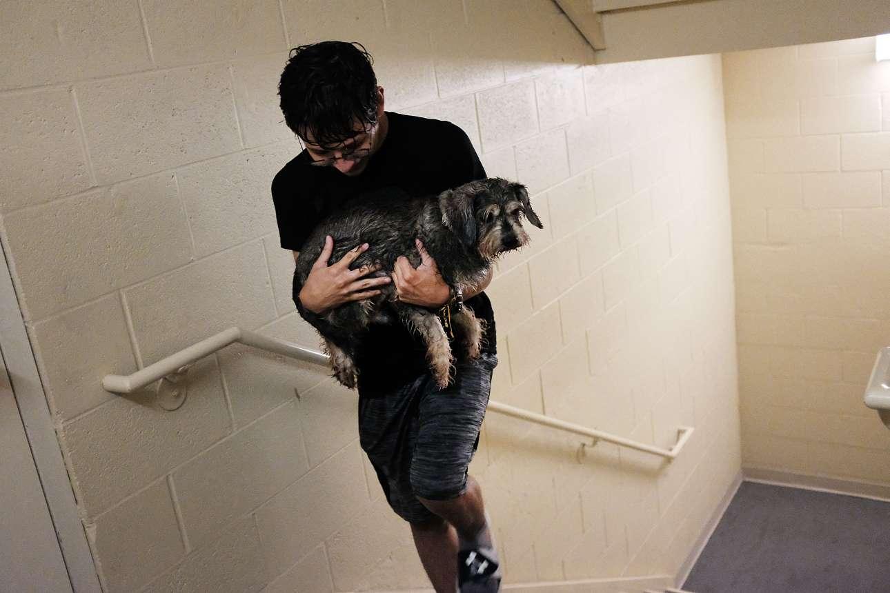 Νεαρός άνδρας έχει μόλις μπει στο ξενοδοχείο της πόλης Φορτ Μάγιερς στην Φλόριντα αφού κατάφερε να βγάλει μια σύντομη βόλτα τον σκύλο του