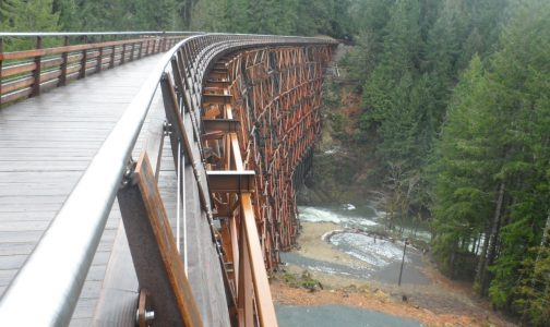 Great-Trail-Kinsol-Trestle-From-Riverside-Road-1290