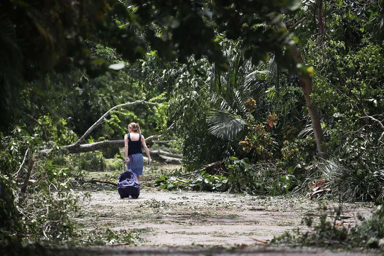 Αυτή η γυναίκα έμεινε για λίγες ημέρες σε καταφύγιο φίλων της. Οταν ο τυφώνας πέρασε, πήρε τον δρόμο της επιστροφής που όμως ήταν «σπαρμένος» με κορμούς δέντρων