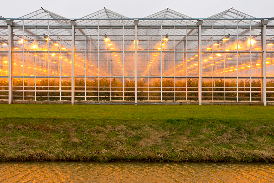 greenhouse in fields Netherlands_980
