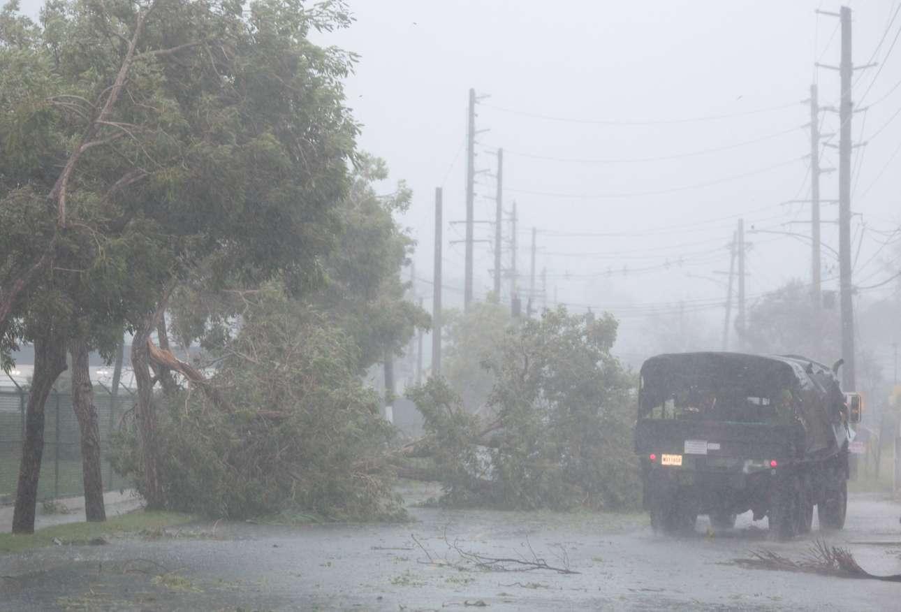 Ξεριζωμένα δένδρα στη μέση του δρόμου, στο Φαγιάρδο, αναγκάζουν τον οδηγό του φορτηγού σε ελιγμούς