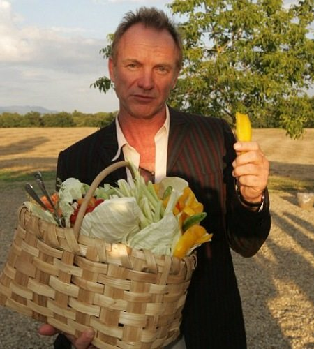 sting_and_organic_vegetables_0
