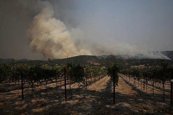 SONOMA, CA - OCTOBER 09: An out of control wildfire approaches Gundlach Bundschu winery on October 9, 2017 in Sonoma, California. Ten people have died in wildfires that have burned tens of thousands of acres and destroyed over 1,500 homes and businesses in several Northen California counties. (Photo by Justin Sullivan/Getty Images)