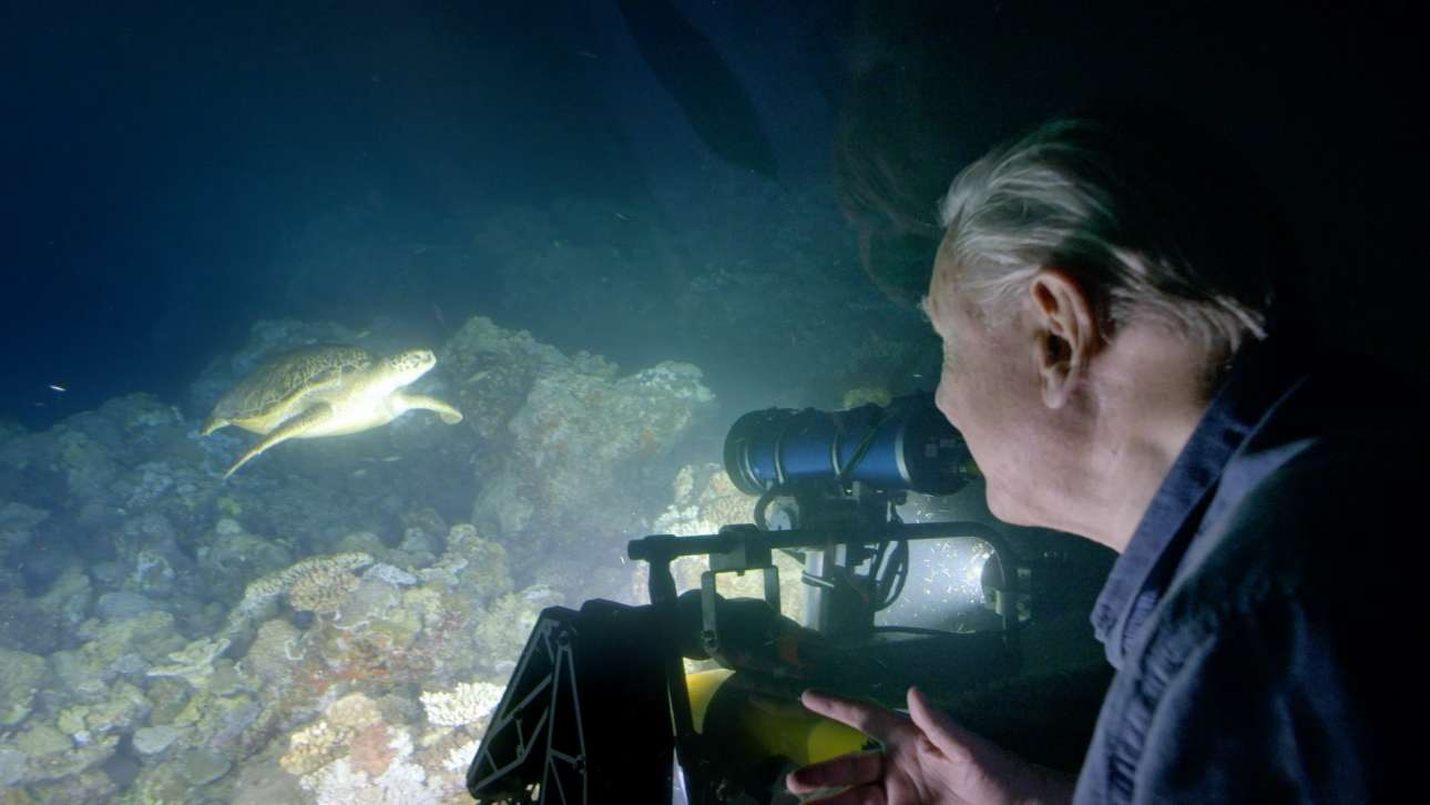 Ο αγαπημένος και παγκοσμίως αναγνωρισμένος ντοκιμαντερίστας με θέμα τα μυστικά της φύσης, Ντέιβιντ Ατένμπορο, εν δράσει