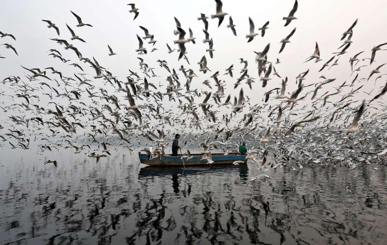 Παρασκευή, 17 Νοεμβρίου, Νέο Δελχί. Δύο βαρκάρηδες και αμέτρητοι γλάροι. Οι άνδρες πάνω στην βάρκα ταΐζουν τα πουλιά στον ποταμό Γιαμούνα ένα ομιχλώδες πρωινό στην πρωτεύουσα της Ινδίας