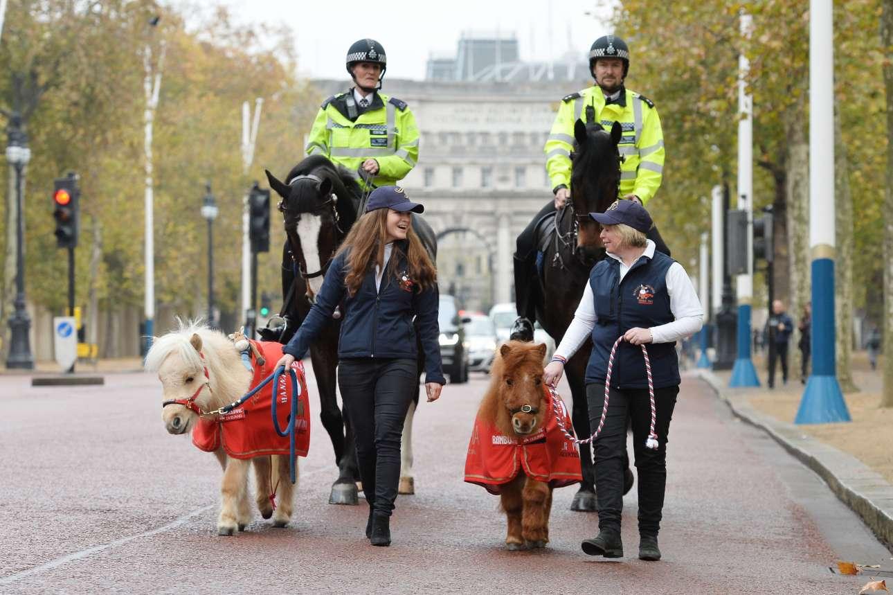 Τετάρτη, 15 Νοεμβρίου, Λονδίνο. Τα δύο μεγάλα άλογα της Μητροπολιτικής Αστυνομίας της βρετανικής πρωτεύουσας συνοδεύουν τα δύο μικρά πόνι που θα συμμετέχουν στο διεθνές σόου του Λονδίνου (Olympia's London International Horse Show)