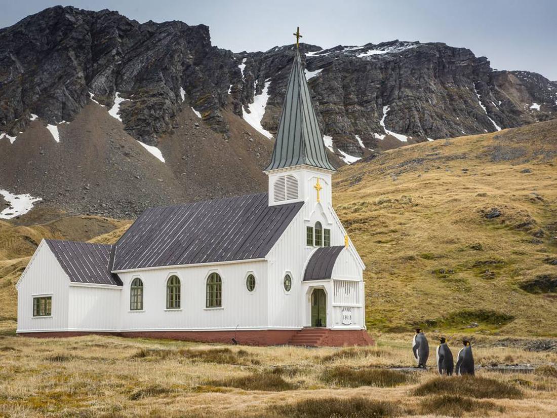 Τρεις πιγκουίνοι καθοδόν προς την κυριακάτικη λειτουργία της εκκλησίας Γκρίτβικεν στο νησί της Νότιας Γεωργίας, αγγλική κτήση στη Νότια Αμερική