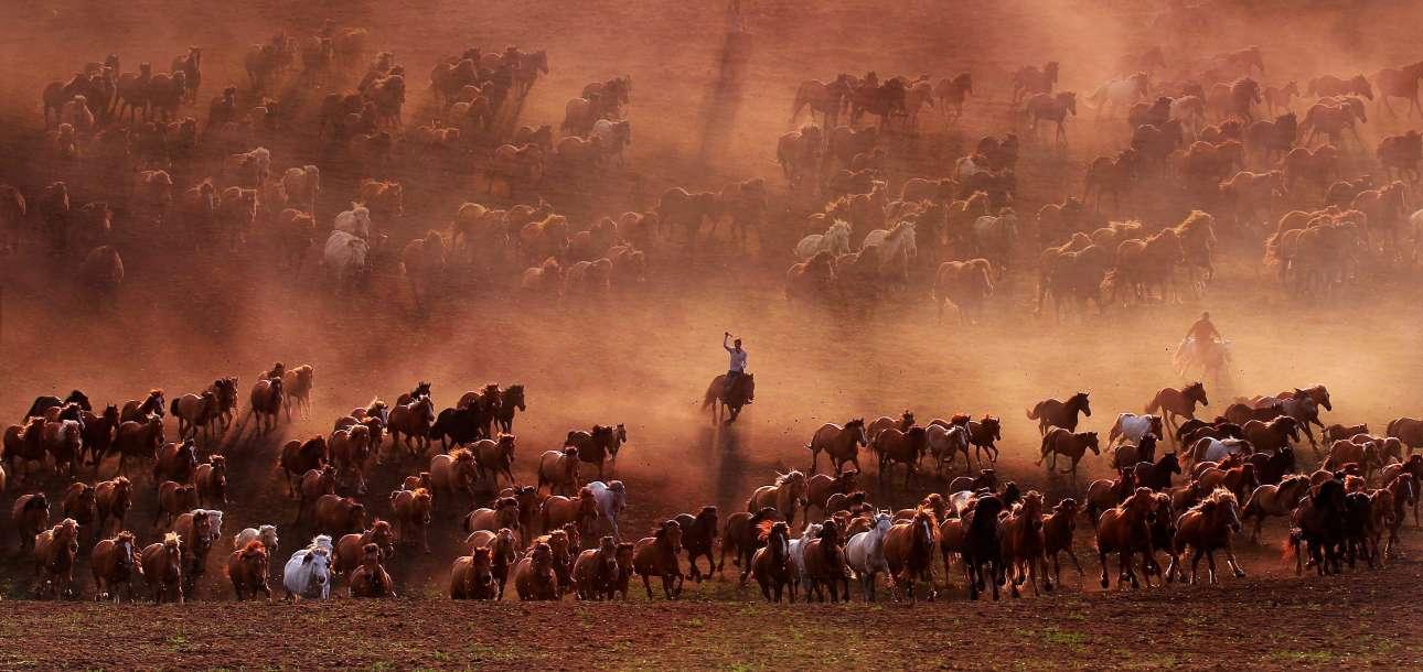 Εντυπωσιακή εικόνα από τους βοσκότοπους του φράγματος Wulangbu στην Εσωτερική Μογγολία, επαρχία της Κίνας