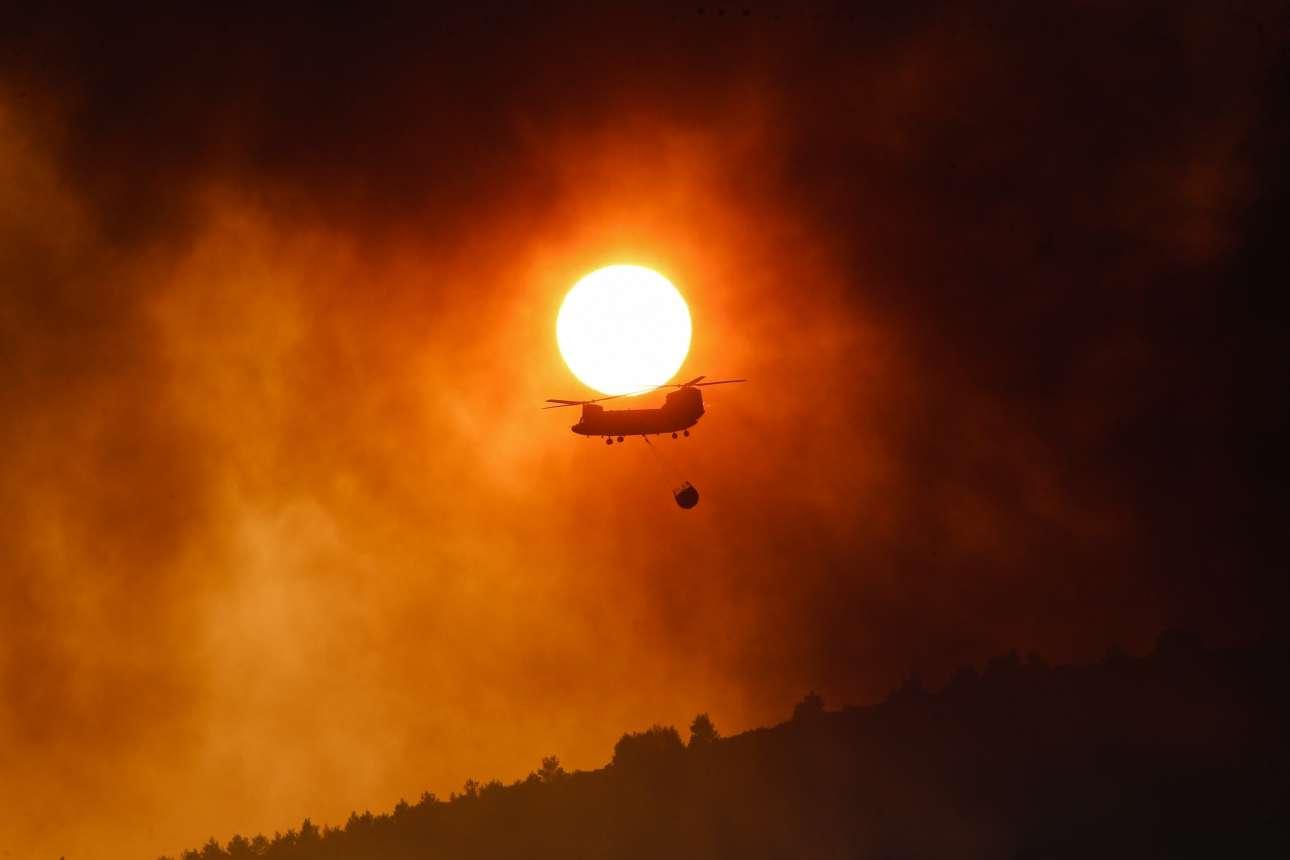 15 Αυγούστου. Η Πυροσβεστική προσπαθεί με όλα τα μέσα να σβήσει τη μεγάλη πυρκαγιά που έχει ξεσπάσει στο Πολυδένδρι, στο Καπανδρίτι Αττικής