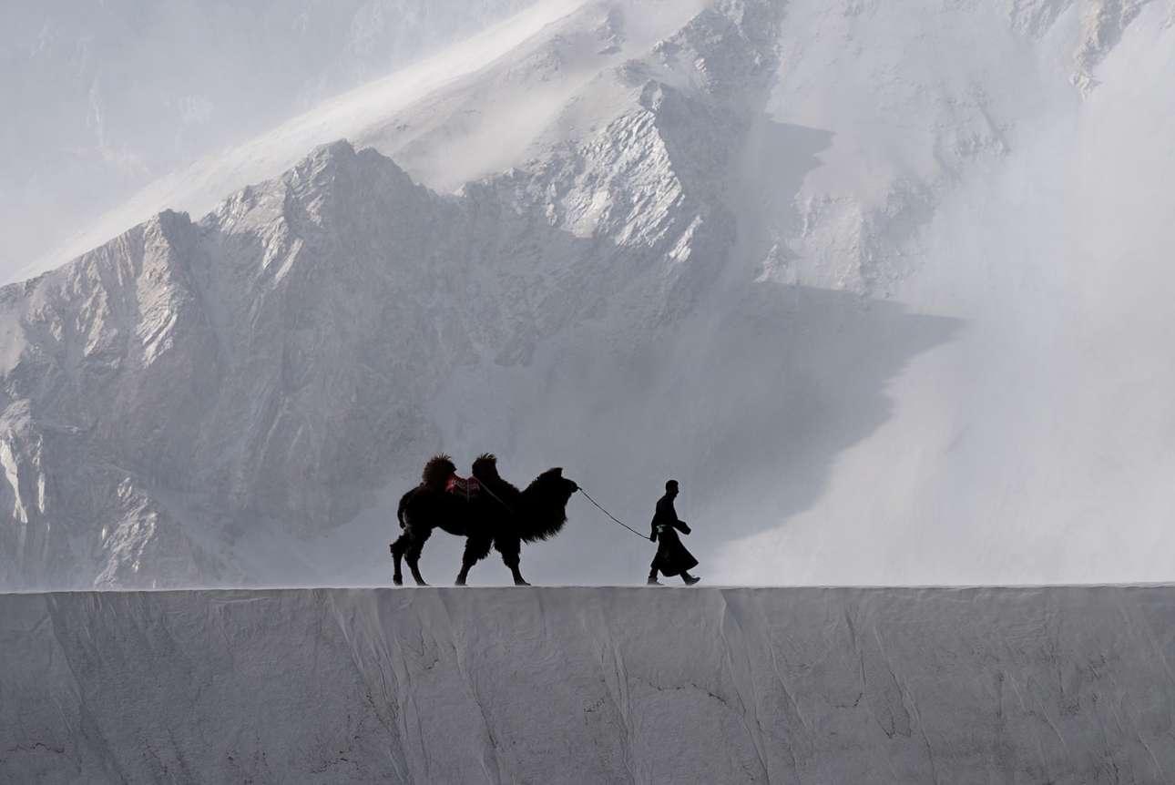 Ενας βοσκός οδηγεί την καμήλα του με φόντο τα επιβλητικά βουνά της περιοχής Λαντάκ στη βόρεια Ινδία. Η Κρίστιν Τέιλορ ταξίδεψε για ένα μήνα στην Ινδία βγάζοντας συγκλονιστικές εικόνες, με τις οποίες κέρδισε το πρώτο βραβείο στην κατηγορία «Ταξιδιωτική Φωτογραφία» του διαγωνισμού