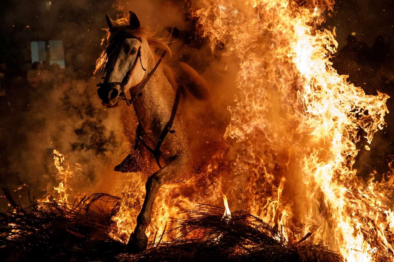 Τετάρτη, 17 Ιανουαρίου, Ισπανία. Εντυπωσιακό στιγμιότυπο από την γιορτή «Las Luminarias», μία παράδοση πολλών ετών, που θέλει τους κατοίκους του San Bartolome de Pinares, στην κεντρική Ισπανία, να περνούν μέσα από φωτιές ιππεύοντας τα άλογά τους, την παραμονή της γιορτής του Αγίου Αντωνίου