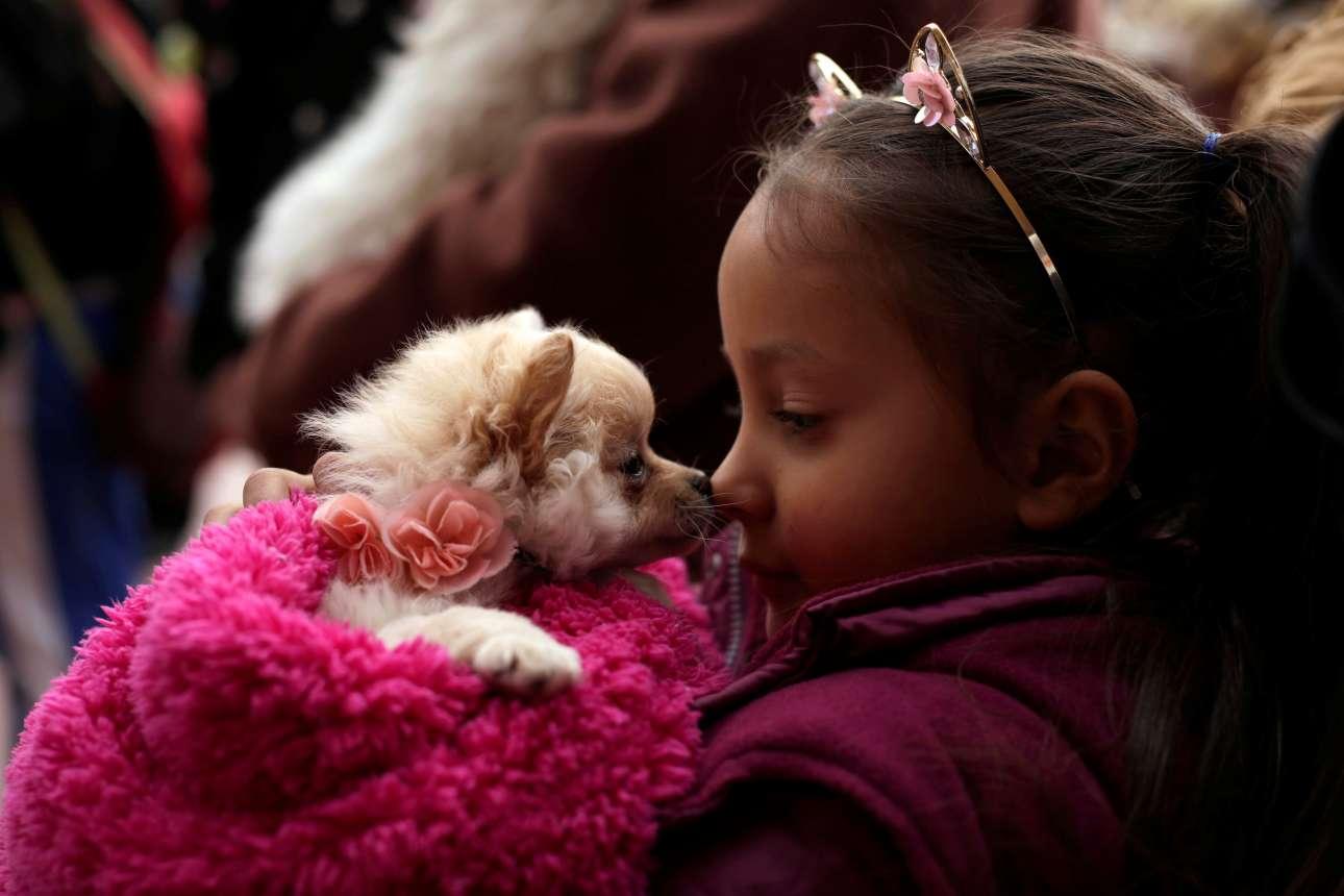 Πέμπτη, 18 Ιανουαρίου, Μεξικό. Χαριτωμένο κορίτσι παίζει με τον μικροσκοπικό σκύλο του, καθώς περιμένει να λάβει την ευλογία ενός ιερέα, με αφορμή τον εορτασμό του Αγίου Αντωνίου, προστάτη των κατοικιδίων, στην Σιουδάδ Χουάρες