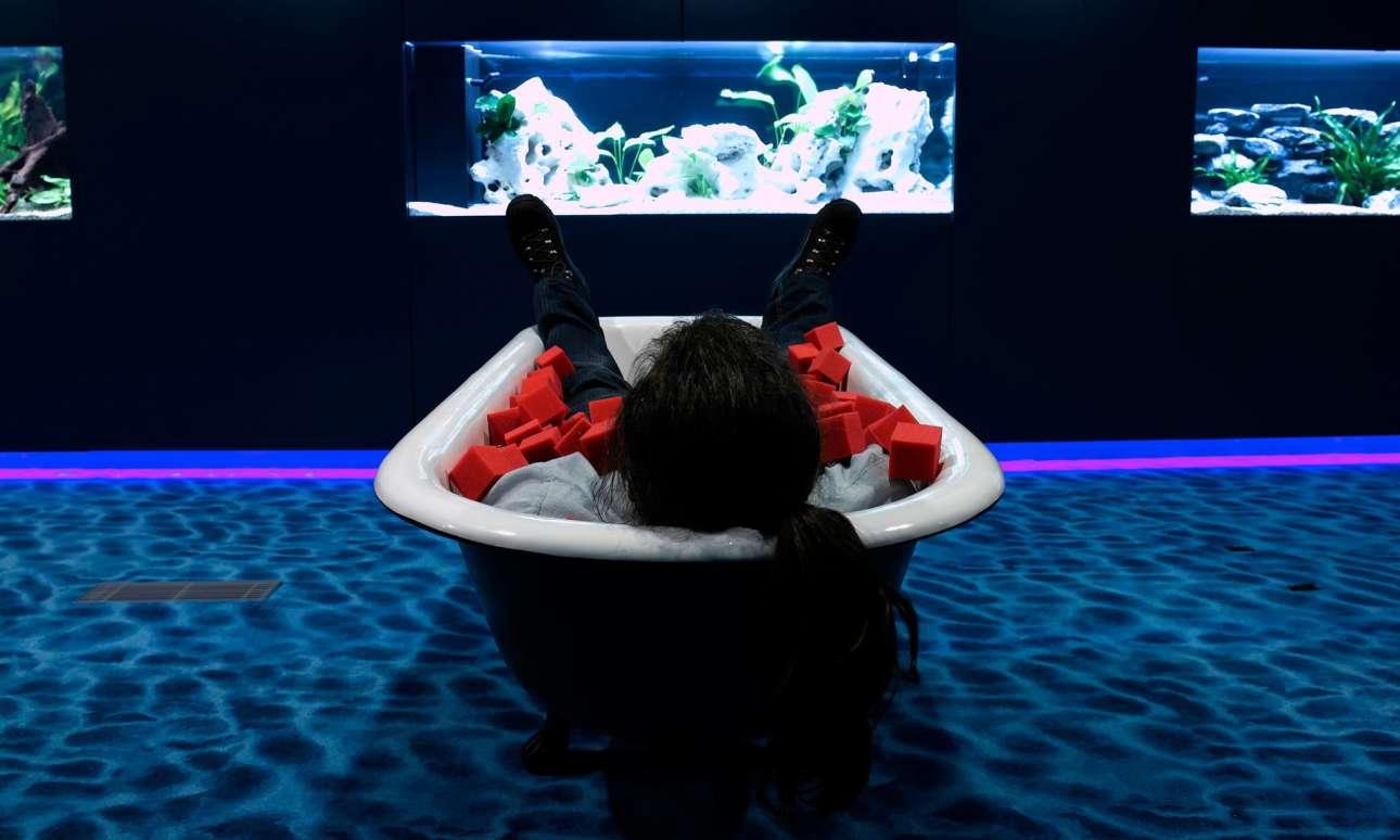 Οι «Zooglers» μπορούν επίσης να πάρουν έναν υπνάκο μέσα σε μπανιέρα, χαζεύοντας τα ενυδρεία που κοσμούν το «λόμπι νερού»