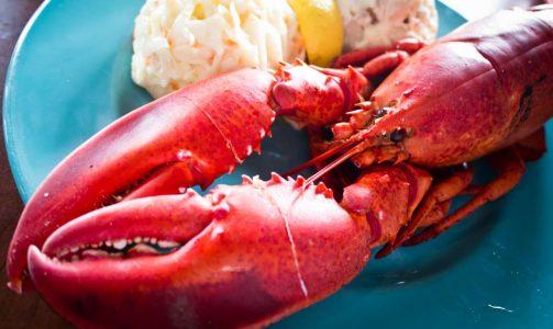 Lobster_Dinner_(6013079655)
