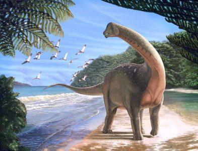 mansourasaurus-shahinae