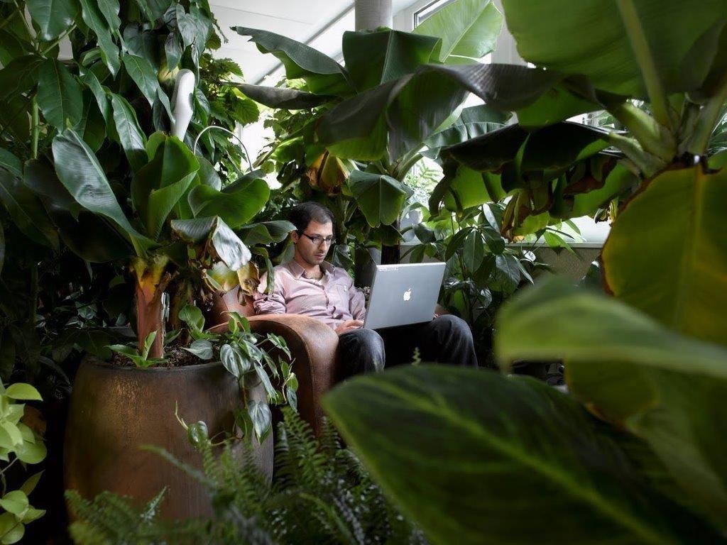 Κάθε αίθουσα συσκέψεων είναι διαφορετικά διακοσμημένη. Στην αίθουσα Ζούγκλα υπάρχουν περίπου 100 είδη διαφορετικών φυτών