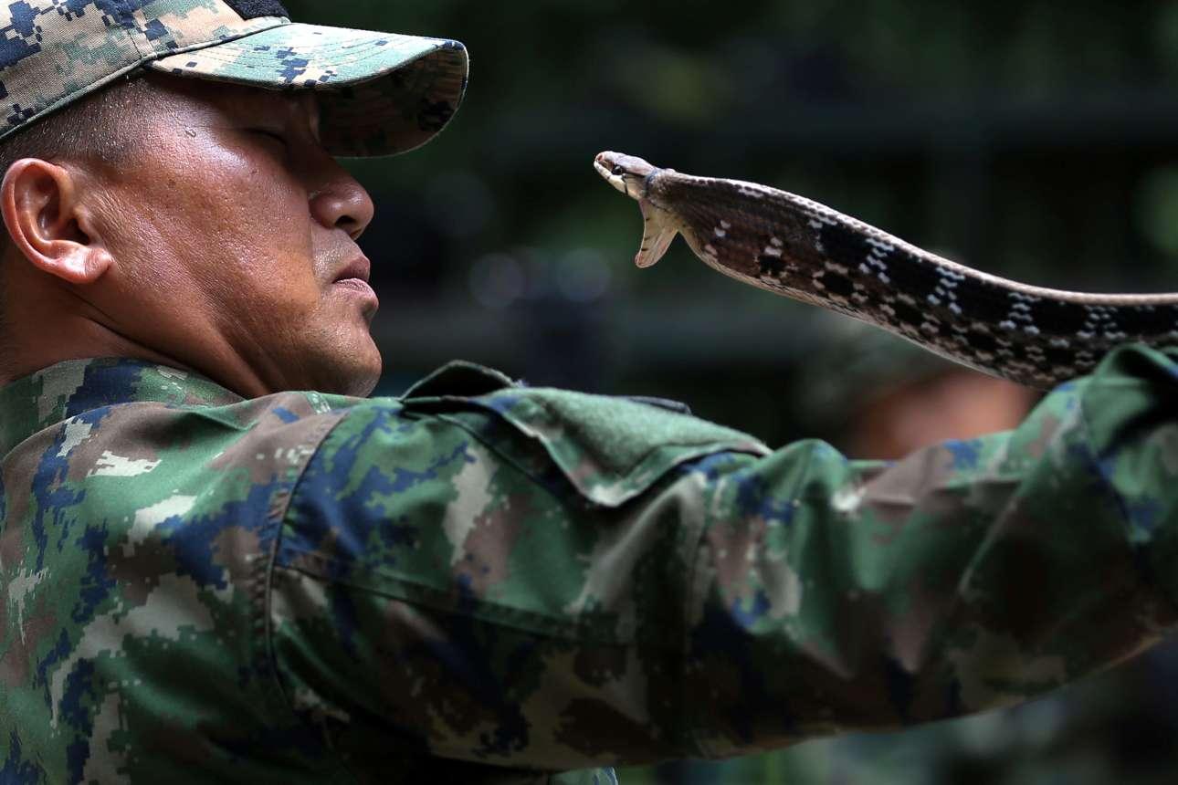 Δευτέρα, 19 Φεβρουαρίου, Ταϊλάνδη. Εκπαιδευτής του Ναυτικού παρουσιάζει μια τεχνική πιασίματος φιδιών στην επαρχία Τσονμπούρι